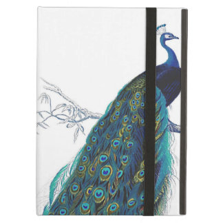 Blue Peacock with beautiful tail feathers iPad Air Covers