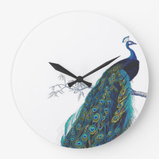 Blue Peacock with beautiful tail feathers Large Clock