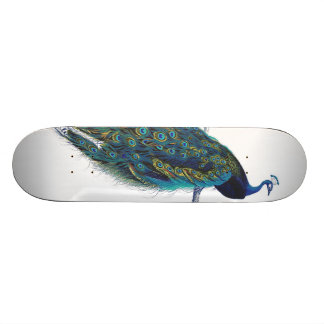 Blue Peacock with beautiful tail feathers Skateboard