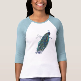 Blue Peacock with beautiful tail feathers T Shirt