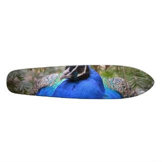 Blue Peafowl Bird Custom Skate Board