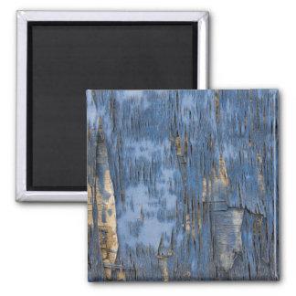 Blue Peeling Paint Texture 2 Inch Square Magnet
