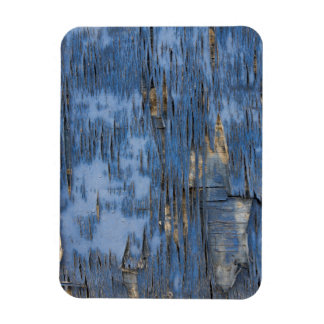 Blue Peeling Paint Texture Rectangular Photo Magnet