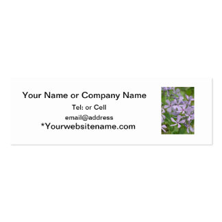 blue phlox with nice purplish petals Double-Sided mini business cards (Pack of 20)