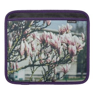 Blue Photograph, Magnolia Tree In Spring iPad Sleeve