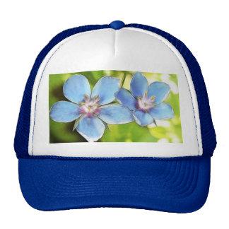 Blue Pimpernel (Anagallis monelli) Flowers Mesh Hats