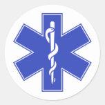 Blue Pink Aqua Baby Hot  Nurse EMS Star of Life Stickers