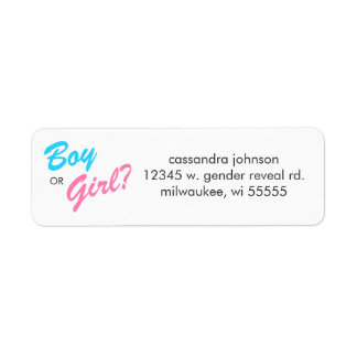 Blue & Pink Boy or Girl Return Address Labels