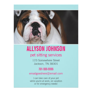 Blue & Pink Photo Pet Sitting Services flyer's 1