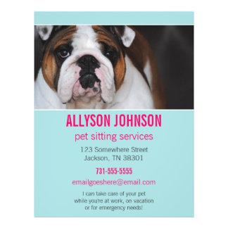 Blue & Pink Photo Pet Sitting Services flyer's 1 Flyer