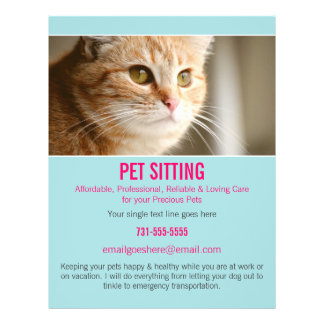Blue & Pink Photo Pet Sitting Services flyer's 302