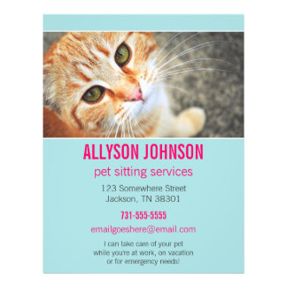 Blue & Pink Photo Pet Sitting Services flyer's 4