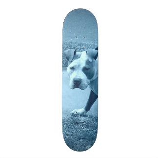 Blue Pit Bull Skateboard
