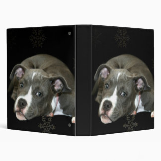 Blue pitbull puppy binder