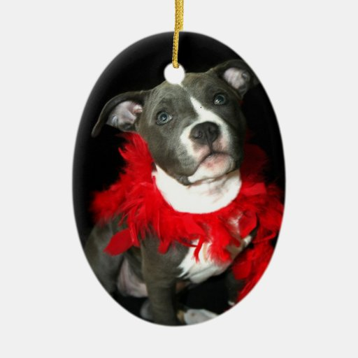 Blue pitbull puppy ornament