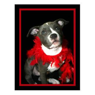 Blue Pitbull Puppy Postcard