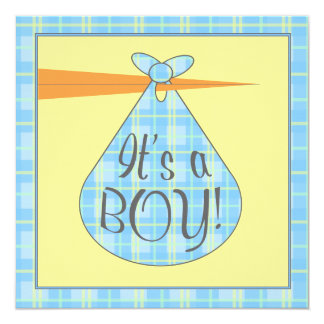 Blue Plaid Stork Baby Shower Invitation