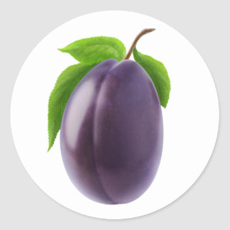 Blue plum classic round sticker