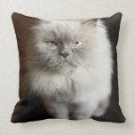 Blue Point Himalayan Cat looking irritated Pillow