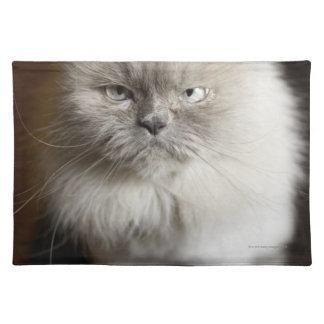 Blue Point Himalayan Cat looking irritated Placemat
