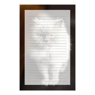 Blue Point Himalayan Cat looking irritated Stationery