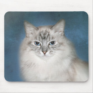 Blue point Himalayan cat Mouse Pad