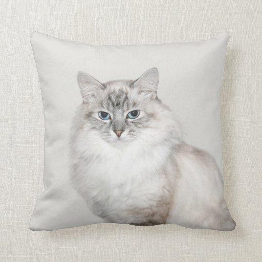 Blue point Himalayan cat Pillow