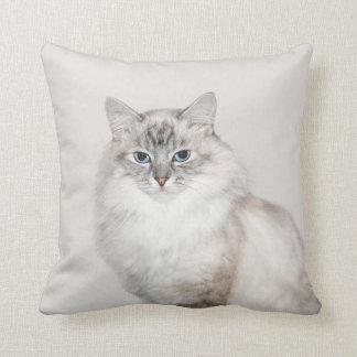 Blue point Himalayan cat Throw Pillow