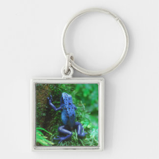 Blue Poison Arrow Frog Keychain