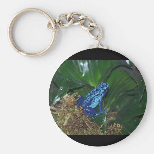 Blue Poison Arrow Frog Portrait Key Chains