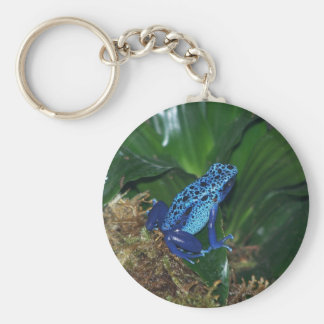 Blue Poison Arrow Frog Portrait Keychain