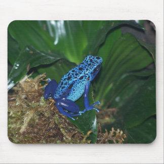 Blue Poison Arrow Frog Portrait Mouse Pad
