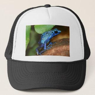 blue poison arrow frog trucker hat