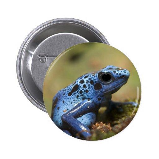 Blue Poison Dart Frog 2 Inch Round Button
