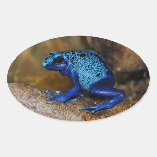 Blue Poison Dart Frog Dendrobates Azureus Oval Sticker