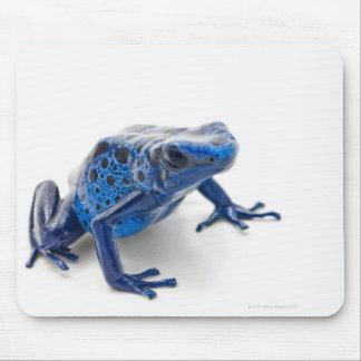 Blue Poison Dart Frog (Dendrobates Tinctorius) Mouse Pad