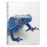 Blue Poison Dart Frog (Dendrobates Tinctorius) Notebook