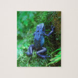 Blue Poison Dart Frog Jigsaw Puzzles