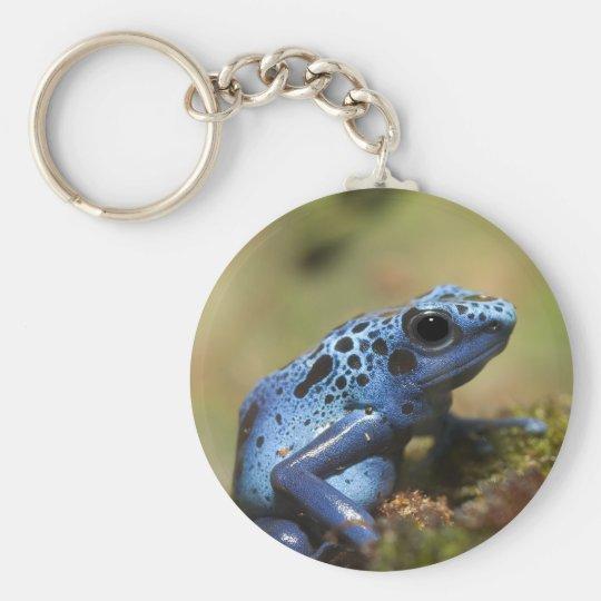 Blue Poison Dart Frog Keychain