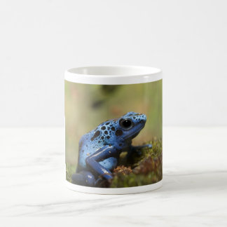 Blue Poison Dart Frog Coffee Mugs