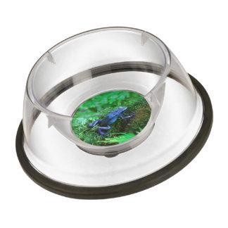 Blue Poison Dart Frog Pet Bowl