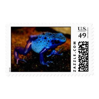 Blue Poison Frog Stamps