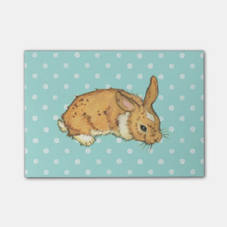 Blue Polka Dot Bunny Post-it Notes