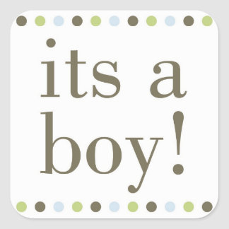 Blue Polka Dot Its a Boy Stickers