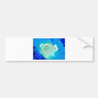 blue pollinate german flower in ultramarine bumper sticker