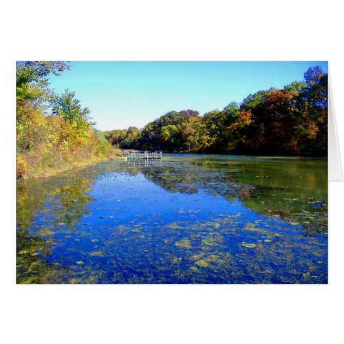 Blue Pond Charter Oak Park 2004