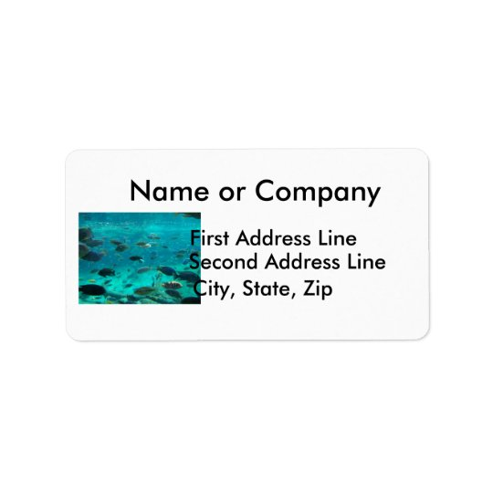 Blue pool of cichlids swimming around design label
