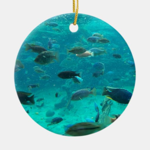 Blue pool of cichlids swimming around design christmas tree ornaments