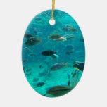 Blue pool of cichlids swimming around design christmas ornaments