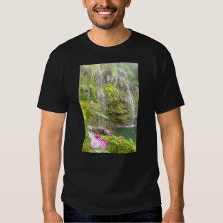 Blue Pools Hana Maui Tee Shirt